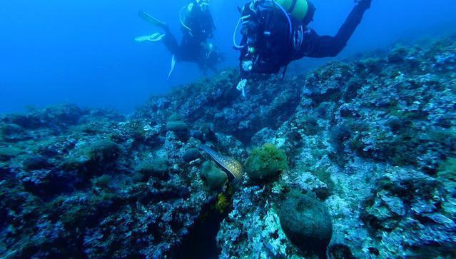 Diving in Spain, Sant Andreu de Llavaneres - By Juanra Posada